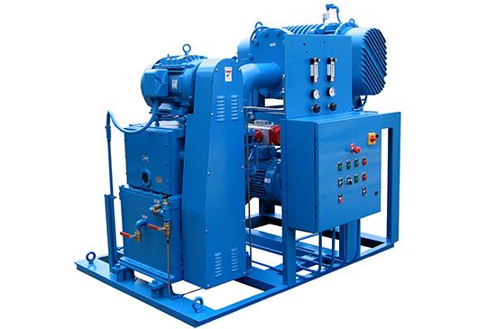 Sistemas de bombeo al vacío de pistón rotativo/reforzadores